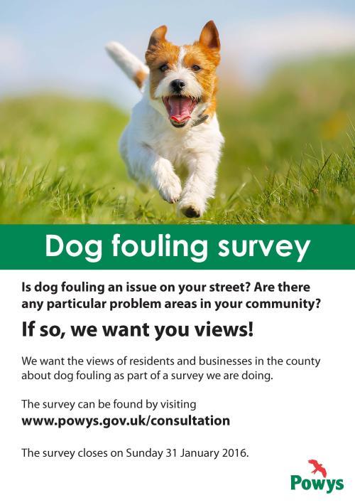 POster - Dog Fouling Survey.jpg
