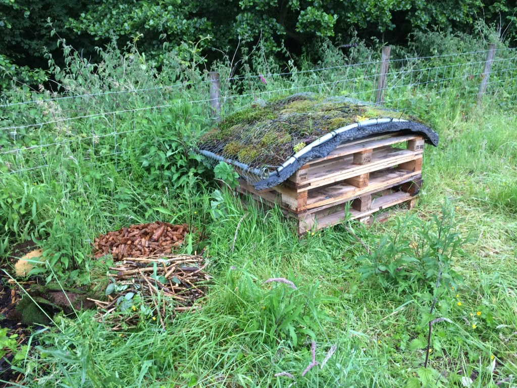 Bug Hotel and fillings